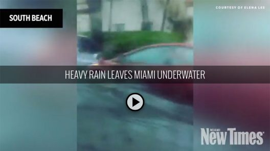 Tropical storm Emily batters Miami Beach, anti-flood system fails