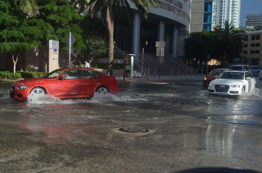 Miami tidal flooding, October 13, 2016